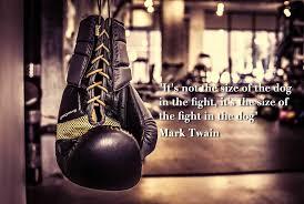 boxer dog in boxing gloves gotham