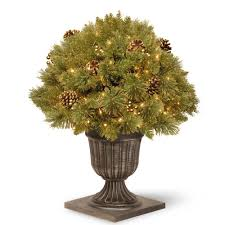 national tree company porch potted trees