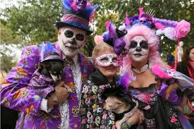 new york park goes to the dogs for 25th halloween dog parade the