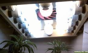 cfl grow light fixture smartphone cfl grow light fixture design pictures terrific with cfl