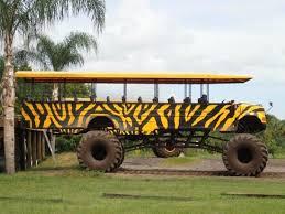 monster bus schoolbus comfortable