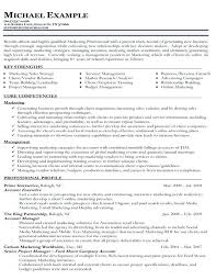 different resume types different resume templates types of resumes formats sle 3