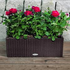 20 Inch Planter by Lechuza Mocha All In One Balconera Cottage Self Watering Planter