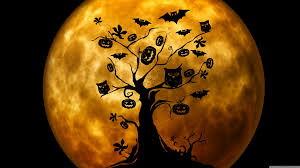 halloween owls and bats orange hd desktop wallpaper widescreen