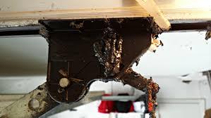 Overhead Door Carrollton Tx Garage Door Service Dallas Tx Overhead Door Repair Garage Ideas