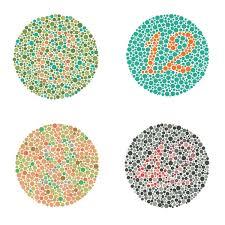 colour blind animals list cat prints color doodle