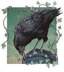 Raven And The Writing Desk Crow Illustration By Alan Baker This Is One Of His Stock Art