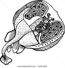 hand drawn sketch bowl fresh fish stock vector 344642960