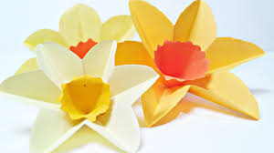 daffodils narcissus paper flower for wall decoration arts and