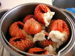cuisiner une langouste cuisine à bord cari langouste et voyage en famille sur brin d île