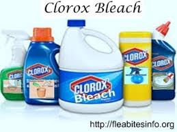 Can Bed Bugs Live In Water Does Bleach Kill Bed Bugs How To Kill Bed Bugs With Clorox Bleach
