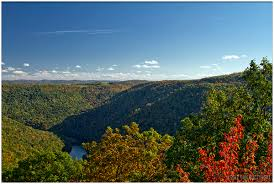 West Virginia forest images 6 unforgettable state forests in west virginia jpg