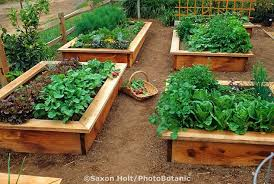 18 best raised beds w seating images on pinterest raised beds