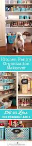 Organizing Kitchen Pantry Ideas 116 Best Organize Pantry Images On Pinterest Pantry Ideas