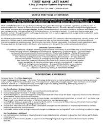 It Executive Resume Examples Technical Officer Resume Sample U0026 Template