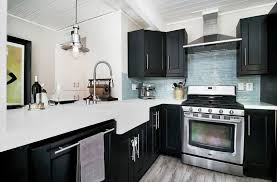 black kitchen cabinets with black appliances photos 27 small kitchens with cabinets design ideas