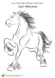 coloriage chevaux realistes 04 sur hugolescargot com