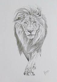 relistic lion tattoo lion publications