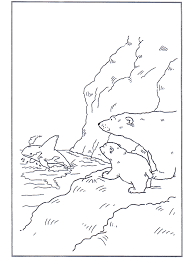 coloring pages polar bear coloring