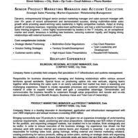 Sample Resume Product Manager by Perfect Executive Medical Equipment Product Manager Resume Sample
