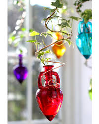 spiral hanging water garden red live plants included vermont