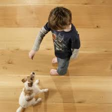 flooring choosing the best flooring for dogs with pet urine