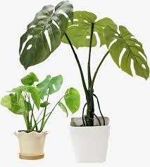 purifier l air d une chambre purificateur d air naturel de la chambre de croissance naturel la