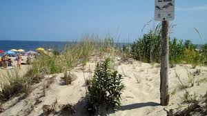 Cape Henlopen State Park Map by Delaware Seashore State Park Youtube