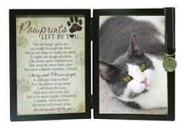 cat memorial sympathy for cat loss pawprints memorial cat frame