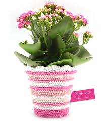 Heb Flowers - 12 best annemarie u0027s lenteboeket images on pinterest spring