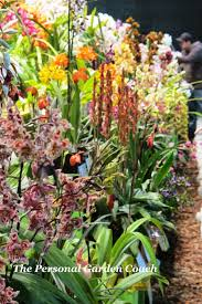 2012 philadelphia international flower show goes hawaiian the
