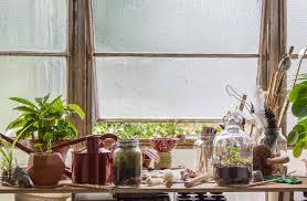 botanicals display terrarium diy ablog
