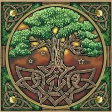 174 best celtic tree of images on mandalas