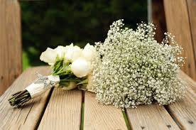 baby s breath bouquet baby breath bouquet