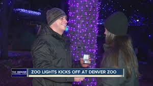 Denver Zoo Of Lights by Zoo Lights Kicks Off At Denver Zoo Youtube