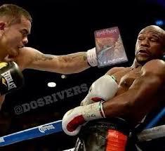 Meme Boxing - boxing s best memes volume one the boxing tribune part 13