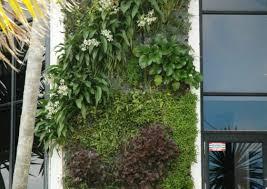 plant cool hanging wall planters indoor diy top indoor wall