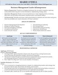 Strategy Resume Professionally Written Resume Samples Rwd