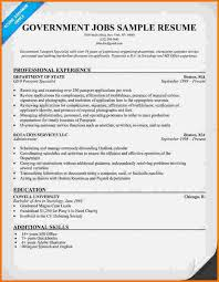 Government Job Resume Format by 10 Federal Government Resume Samples Financial Statement Form