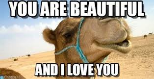 You Re Beautiful Meme - 75 funny i love you memes for him and her ilove messages