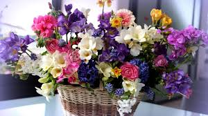 flower basket photo collection flowers baskets hd wallpapers