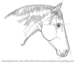 horse eye drawing in pencil
