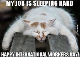 Labor Day Meme - may 1st is may day international workers labor day top memes