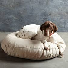 Comfortable Dog 30 Dog Sofa Designs The Your Dog Comfort Offer Hum Ideas