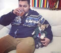 fotos graciosas de hombres borrachos perros borrachos imágenes graciosas y divertidas