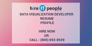 data visualization developer resume profile hire it people we
