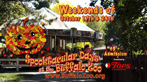 buffalo zoo halloween commercial youtube