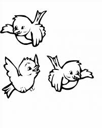 bird coloring pages print sheet animal oriole sheets