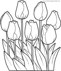 coloring pictures of flowers to print tropical flower coloring pages flowers coloring pages printable plus