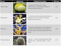 Plant Disease Journal - the urgent need for robust coral disease diagnostics